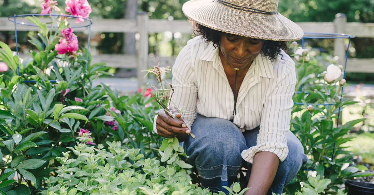 5 Ways Gardening Supports Your Overall Well-Being