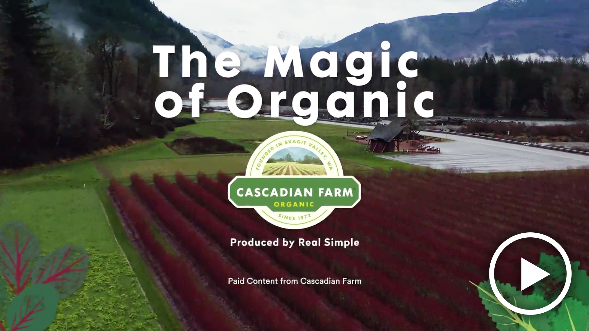 Magic of Organic