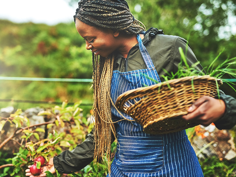 photo of woman collecting from compost